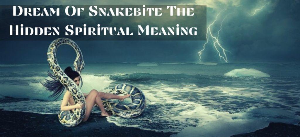 Dream Of Snakebite-The Hidden Spiritual Meaning