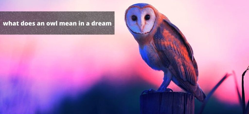 What does an owl mean in a dream?